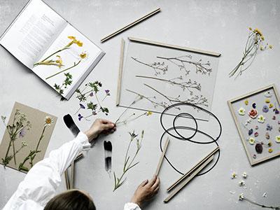 bilderrahmen - frame & pinch, eiche, gummiband, acrylglas